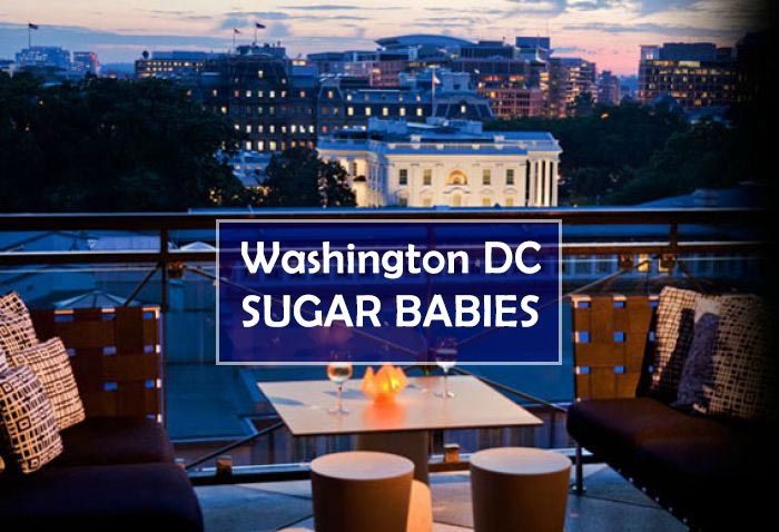 Washington DC Sugar Babies